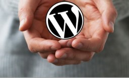 Free WordPress Help
