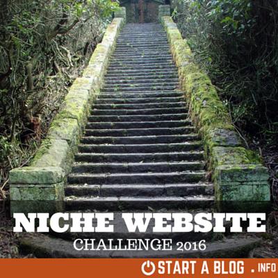 Niche Website Challenge 2016