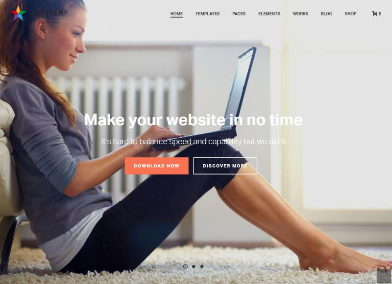 Best Premium WordPress Themes – Mobile Responsive